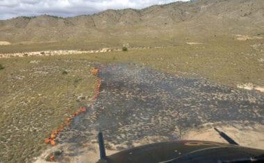 Efectivos del Infomur se movilizan para apagar un incendio forestal en la Sierra del Molar, en Jumilla