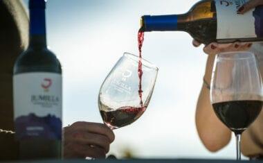 """Los Vinos DOP Jumilla suman 52 reconocimientos en el concurso """"The Autumn blind Tastings"""""""