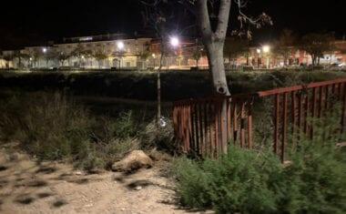 Un vehículo cae a la Rambla desde el Puente de Hierro