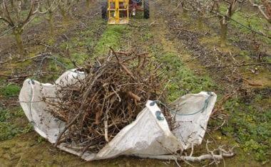 IU Verdes considera que la comunidad y el Ayuntamiento dejan sin alternativas a las pequeñas parcelas agrícolas con respecto a los restos de podas