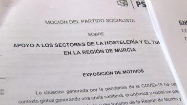 Moción del PSOE en el pleno de enero