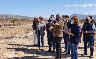 La Comunidad convoca ayudas para jóvenes agricultores por importe de 9,2 millones de euros