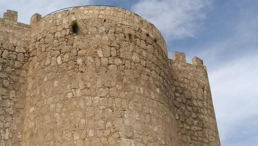 Ciudadanos muestra su preocupación por el crecimiento de vegetación en las paredes del castillo