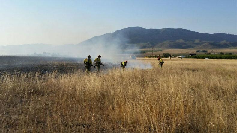 Brigadas forestales trabajando en la zona afectada