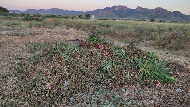 IU - Verdes Jumilla afirma que se están depositando residuos de restos de jardines en un solar debajo del campo de césped artificial