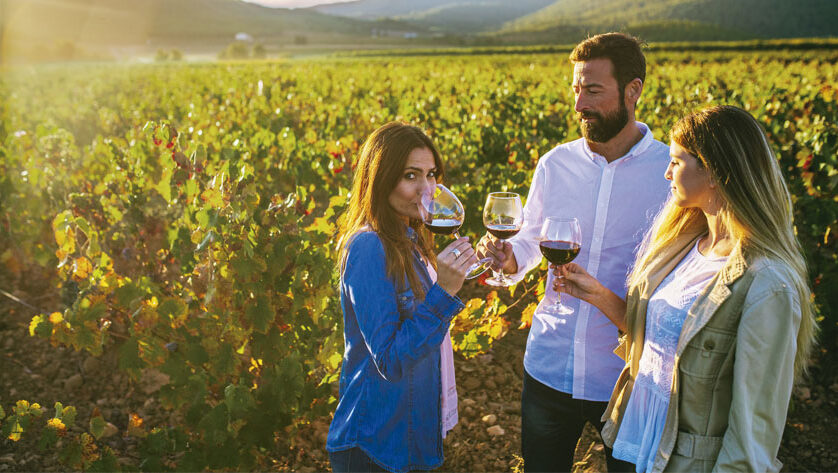El Bus del Vino de la Región reanuda en octubre las excursiones a las rutas enoturísticas de Bullas, Jumilla y Yecla