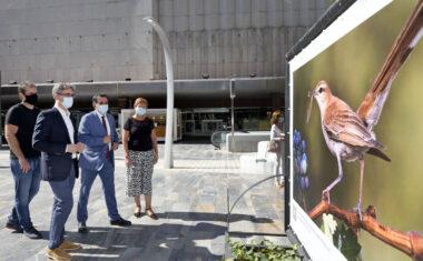 """Dando un paseo por Murcia se puede admirar la muestra de fotografías """"Jumilla el Equilibrio Perfecto"""""""