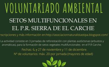 STIPA prepara unas jornadas de reforestación en el Parque Regional Sierra de El Carche